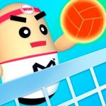 Jeu 3D Amazing VolleyBall