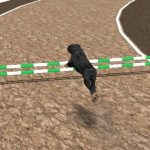 Jeu Crazy Real Dog Race