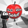 Jeu Black and white snake